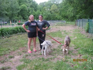 Smiling young women with goats Munchkin & Wilbur